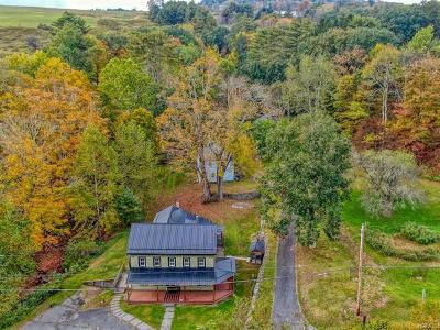 Callicoon Single Family Home For Sale: 177 County Route 121