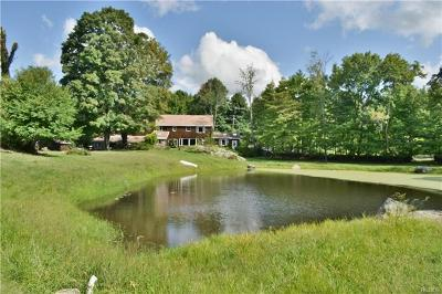 Chester Single Family Home For Sale: 273 Gibson Hill Road
