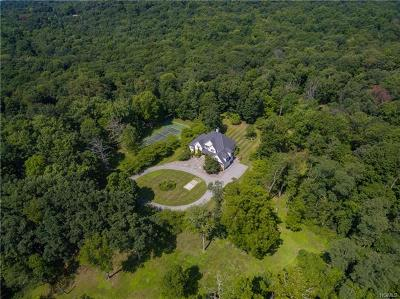 Dutchess County Single Family Home For Sale: 1179 Beekman Road