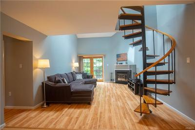 Ossining Condo/Townhouse For Sale: 11 Nicole Circle #4