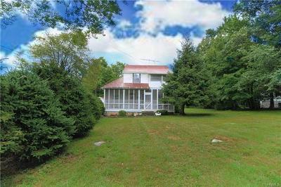 Wurtsboro Single Family Home For Sale: 178 Park Road