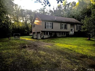 New Paltz Single Family Home For Sale: 237 South Ohioville Road