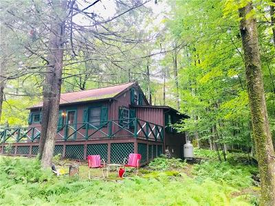 Single Family Home For Sale: 17 East Adirondack Trail Tr 103b