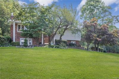 Single Family Home For Sale: 39 Skyline Drive