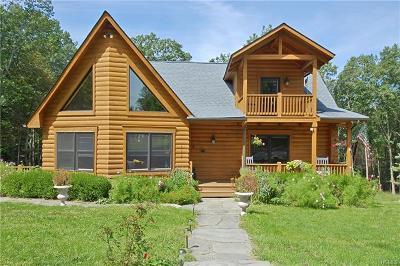 Pine Bush Single Family Home For Sale: 122 Burlingham Road
