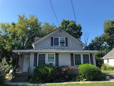 Dutchess County, Orange County, Sullivan County, Ulster County Rental For Rent: 132 Kelly Avenue #A