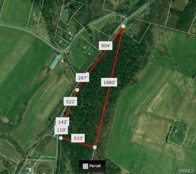 Residential Lots & Land For Sale: Callicoon Center Road
