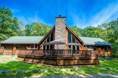 Glen Spey Single Family Home For Sale: 282 Decker Road