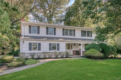 Tappan Single Family Home For Sale: 98 Liberty Road
