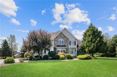 Lagrangeville Single Family Home For Sale: 97 Reggies Way