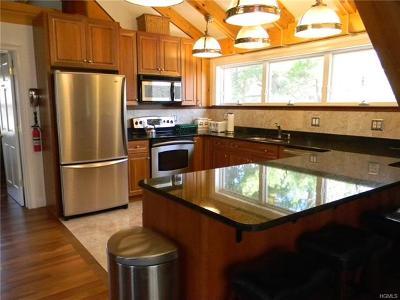 Dutchess County Rental For Rent: 21 Bykenhulle Road