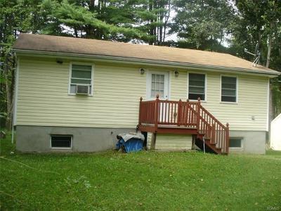 Wurtsboro Single Family Home For Sale: 3987 State Route 209