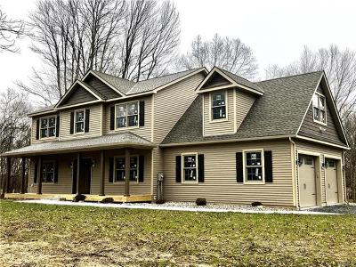 Dutchess County, Orange County, Sullivan County, Ulster County Single Family Home For Sale: 25 Pirog Road