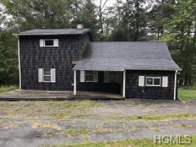 Liberty, Swan Lake, White Sulphur Springs, Ferndale, Liberty Village, Parksville Single Family Home For Sale: 19 Balsam Drive