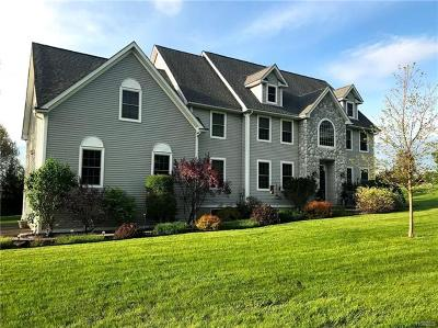 Fishkill Single Family Home For Sale: 12 Charlotte Road