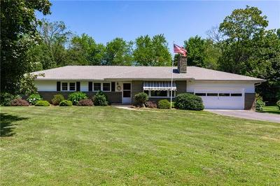 Dutchess County Single Family Home For Sale: 49 Flower Hill Road
