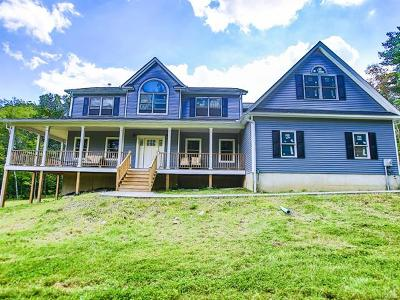 Middletown Single Family Home For Sale: 171 Grahamtown Road