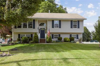 Chester Single Family Home For Sale: 35 Hudson Street