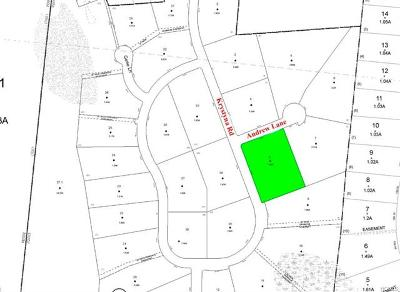 Bethel Residential Lots & Land For Sale: Lot 8 Nys Hwy 17b