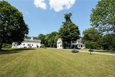 Millbrook Single Family Home For Sale: 3231 Sharon Turnpike