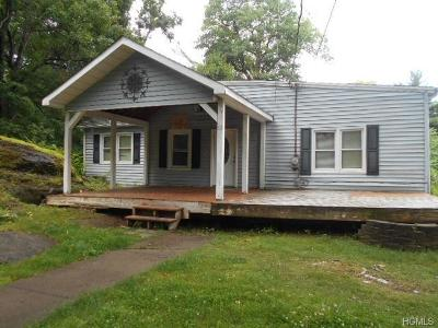 Saugerties Single Family Home For Sale: 68 Eastern Parkway
