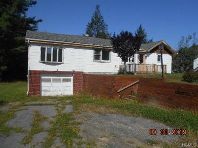 Wurtsboro Single Family Home For Sale: 341 County Route 56