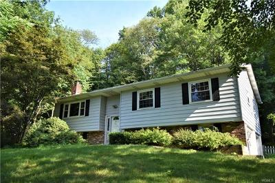 Dutchess County Single Family Home For Sale: 120 Overhill Road