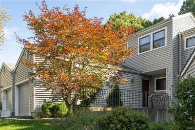 Westchester County Condo/Townhouse For Sale: 214 Horseshoe Circle