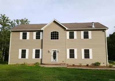 Sullivan County Single Family Home For Sale: 74 Doll Road
