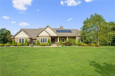 Pine Bush Single Family Home For Sale: 680 State Route 302