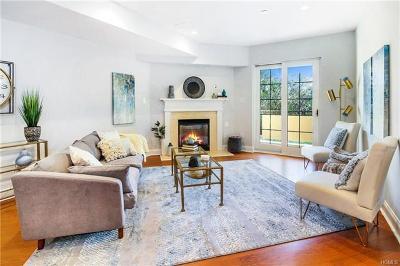 White Plains Condo/Townhouse For Sale: 257 Central Avenue #2D