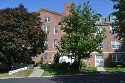 Westchester County Condo/Townhouse For Sale: 4409 Villa At The Woods