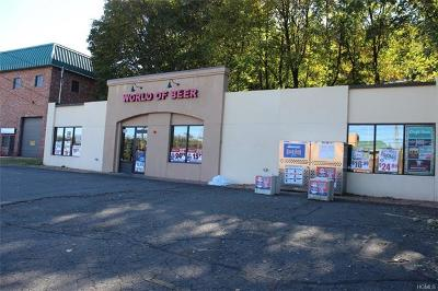 Rockland County Commercial For Sale: 147 Route 9w