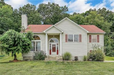 Dutchess County Single Family Home For Sale: 34 Secor Lane