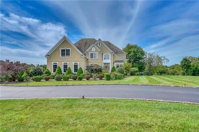 Dutchess County Single Family Home For Sale: 5 Trinity Way