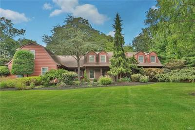 Rockland County Single Family Home For Sale: 20 Pine Glen Drive