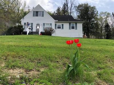 Wingdale Single Family Home For Sale: 6604 Route 55