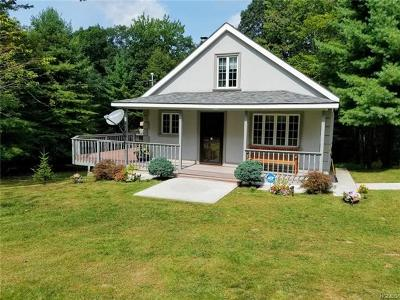 Single Family Home For Sale: 1086 County Route 56