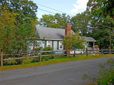 Wurtsboro Single Family Home For Sale: 16 Highview Avenue