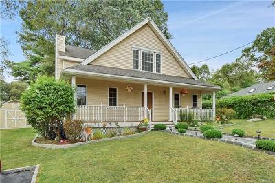 Westchester County Single Family Home For Sale: 23 Brandeis Avenue