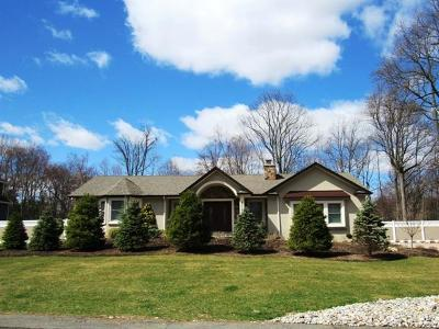 Rockland County Single Family Home For Sale: 141 Burda Lane
