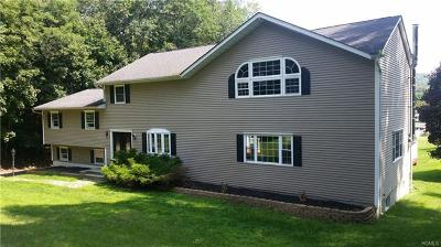 Dutchess County Single Family Home For Sale: 13 Summit Avenue