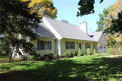 Dutchess County Single Family Home For Sale: 33 Emans Road