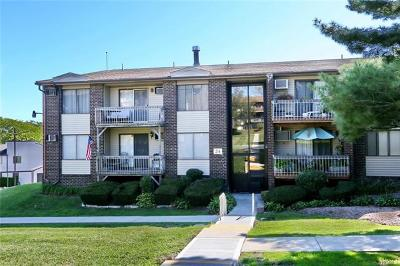 Rockland County Condo/Townhouse For Sale: 245 Country Club Lane