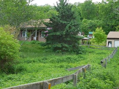 Sullivan County Single Family Home For Sale: 449 Roosa Gap Road