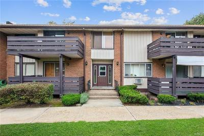 Rockland County Condo/Townhouse For Sale: 46 Sierra Vista Lane