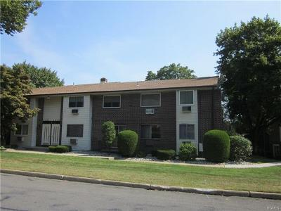 Rockland County Condo/Townhouse For Sale: 14 Blue Hill Commons Drive #D
