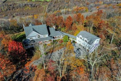 Dutchess County Single Family Home For Sale: 511 Depot Hill Road