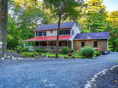 Sullivan County Single Family Home For Sale: 383 Cox Road