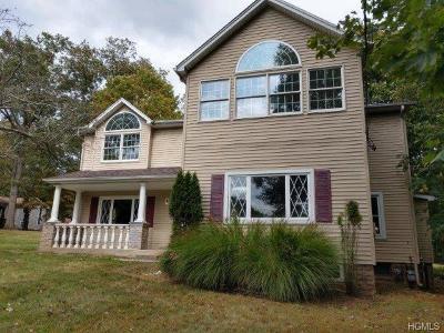Single Family Home For Sale: 20 Maple Avenue
